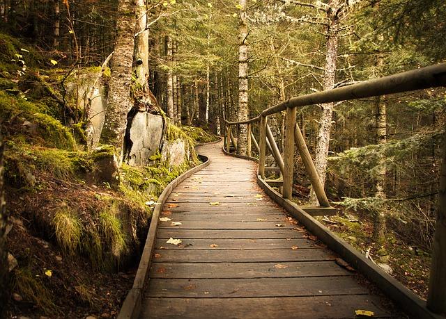 Chodník nebo cestička, důležitá součást domu